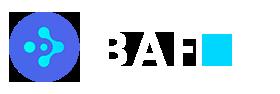 BAFit - Servicii hardware & software
